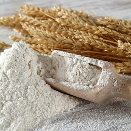 white flour with scoop and straw photo