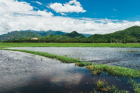 Rural landscape, view of rice fields, beautiful view of mountains, rivers and a farm village. Blue sky with white clouds. Wonderful Asian landscape