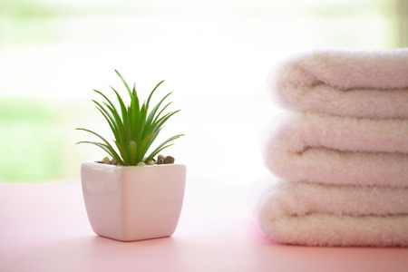 Spa. Rolled White Body Towels on Pink Background. Towel Concept. Photo For Hotels and Massage Parlors. Purity and Softness. Towel Textile.