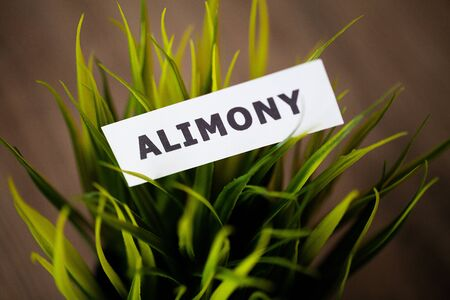 Divorce and separation concept. Alimony written on white card.