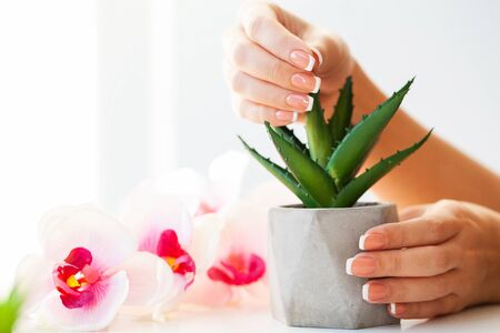 Nails care. Beautiful womans nails with french manicure, in beauty studio