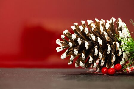 Pine cone with place for text on Christmas background