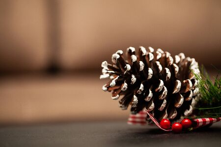 Christmas pine cone with place for text.