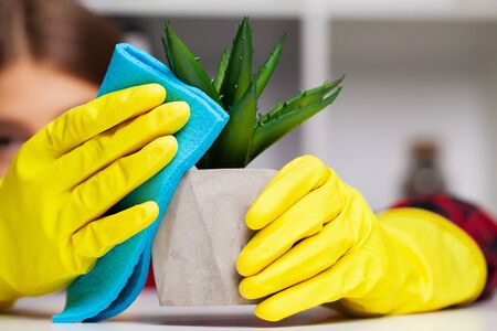 Close up of cleaner in yellow gloves wipes dust in the office. Foto de archivo