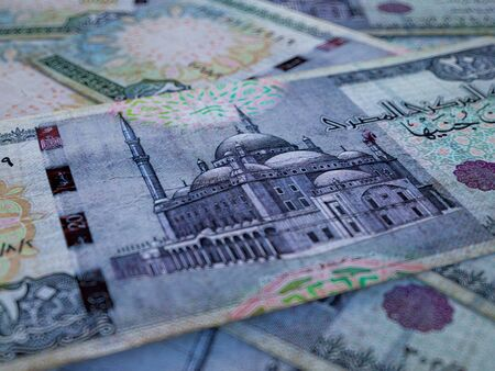 Egyptian pounds. Money of Egypt, business background. EGP. Closeup shot