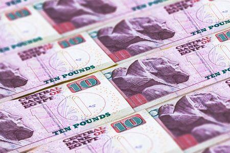 Money of Egypt. Egyptian pound background. EGP Standard-Bild