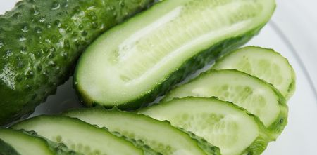 pepino: Cucumber cut by segments on a white background  Stock Photo