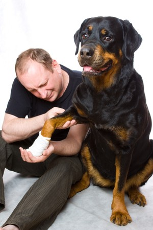 The man with a Rottweiler in studio photo