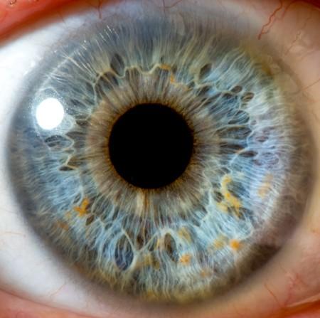 globo ocular: macro de ojo