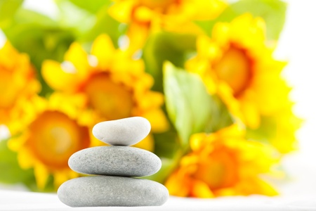 stones for spa therapy Stock Photo - 9094664