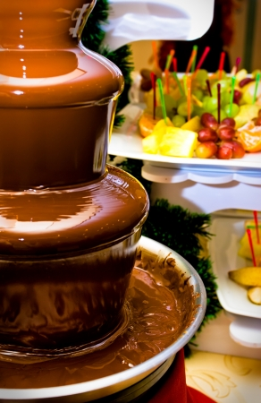 Fruit, berries prepared for ������� in a chocolate fountain. Stock Photo