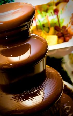 melt chocolate: De frutas, bayas preparada en una fuente de chocolate.