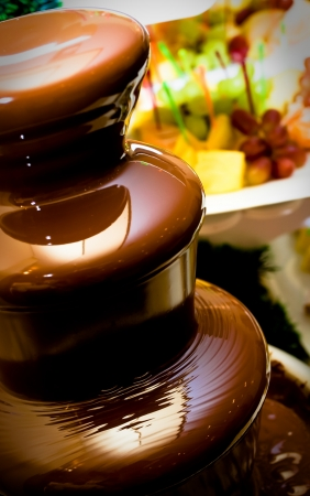 food buffet: Fruit, berries prepared for ������� in a chocolate fountain. Stock Photo