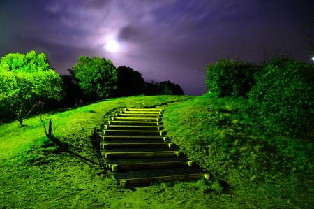 moonshine: Japanese Park with Moonshine