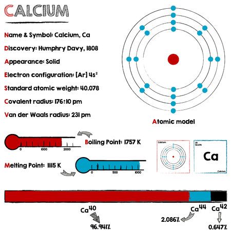 Large and detailed infographic about the element of calcium. Illustration