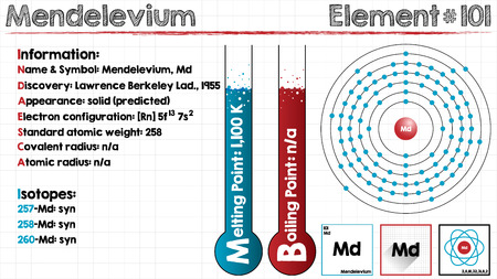 boiling point: Large and detailed infographic of the element of mendelevium. Illustration