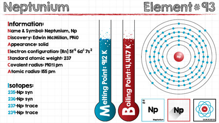 covalent: Large and detailed infographic of the element of neptunium Illustration