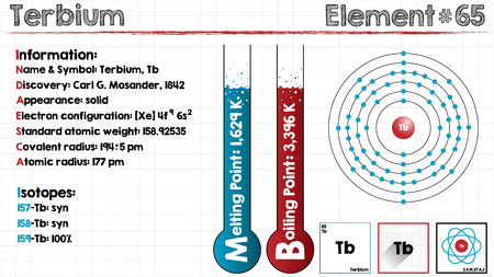 Large and detailed infographic of the element of terbium. Illustration