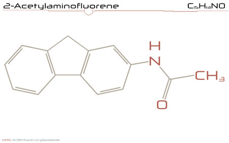 Large and detailed infographic of the molecule of 2-Acetylaminofluoren