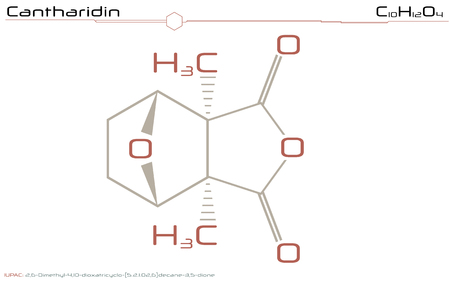 Large and detailed infographic of the molecule of cantharidin Ilustração