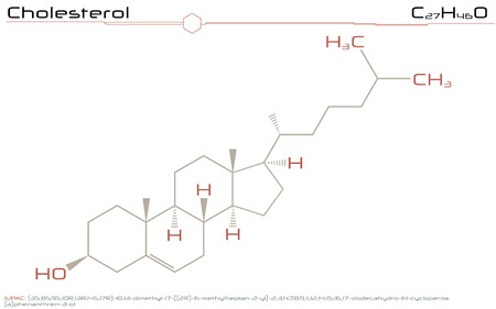 Large and detailed infographic of the molecule of cholesterol Ilustração