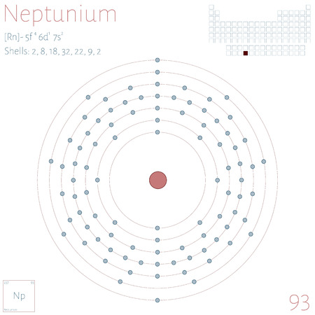 Large and colorful infographic on the element of Neptunium.