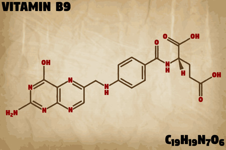 Detailed infographic illustration of the molecule of Vitamin B9.