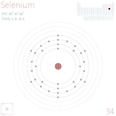 Large and colorful infographic on the element of selenium. Illustration