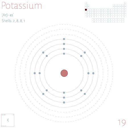 Large and colorful infographic on the element of potassium. Illustration