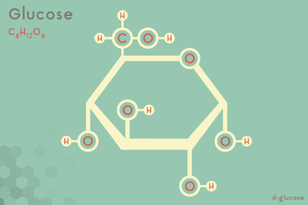 Infografía grande y detallada de la molécula de glucosa. Ilustración de vector
