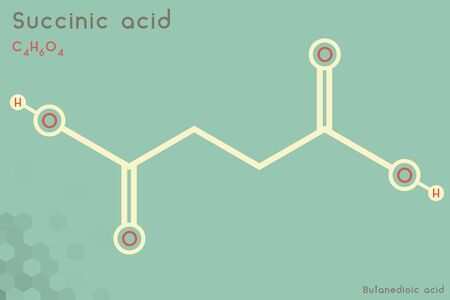 Large and detailed infographic of the molecule of succinic acid