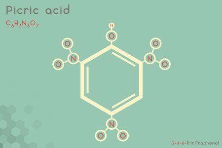 Large and detailed infographic of the molecule of Picric acid Vectores