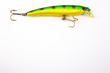 Fishing - bait for fishing predatory fish on spinning. White background. Place for text.