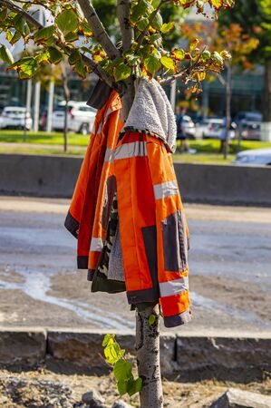 Orange overalls road workers on a tree. Background image.