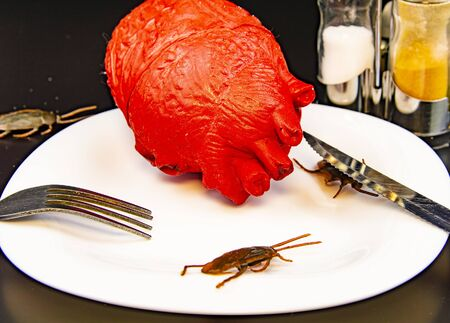 Zombie food on a plate with a cockroach - Halloween. Human heart.
