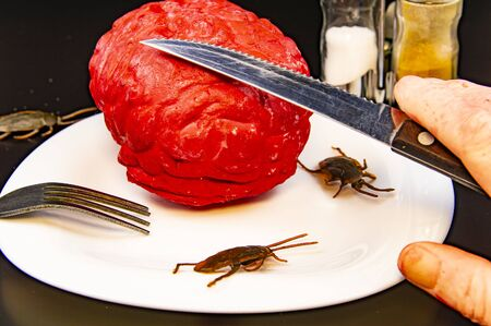 Zombie food on a plate with a cockroach - Halloween. Human brain.
