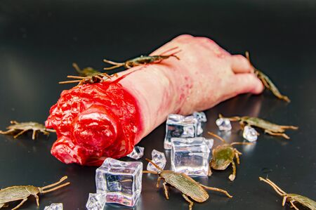 Hand eating zombie with a cockroach - Halloween.