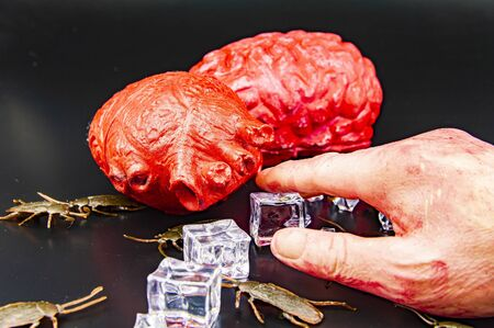 Zombie food on a cockroach - Halloween. Hand, heart, brain.
