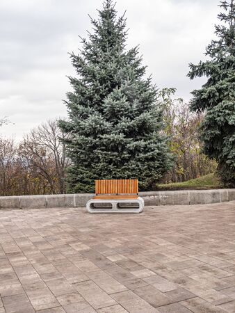 Bench for relaxing in a public park. Place for text. Background.