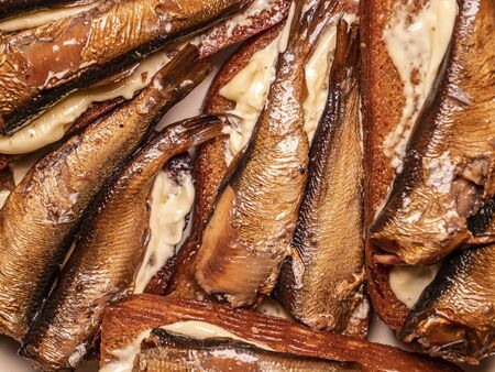 Sandwiches with sprats on bread. Food photo. Place for text. Background image.