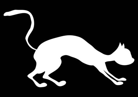 Pet white cat on a black background. Vector image. Background image. Place for text. Template. Advertising. Poster. Fight of cats. Homeless cat. Street cats. 일러스트