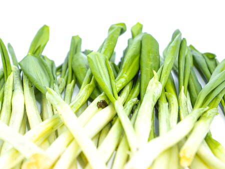 Spring wild garlic leaves on a white background. Place for text. Recipe. Vitamin. Place for text.