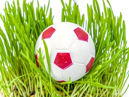 Soccer ball on the green grass of a football field lawn. Sports game. Football. Championship. Europe. Peace. Iesto for the text. Background image. Poster. Template.