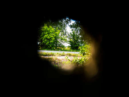 Green trees through a round hole in the wall. Look into the hole .. Botany. Background image. Sunlight. Poster. Place for text. Template.