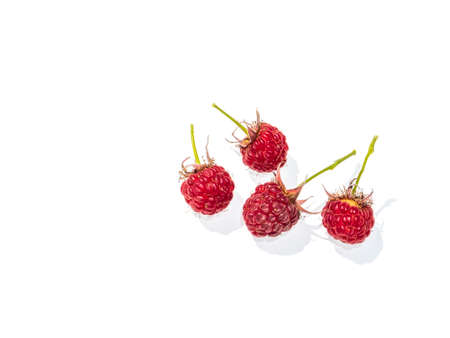 Berries of red raspberries on a white background. The fruits of the orchard. Shop window. Billboard. Advertising. Place for text. Poster. Background image. Template. Raspberry jam. Archivio Fotografico