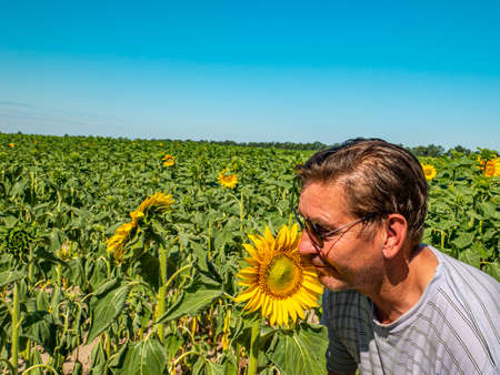 A man in sunglasses against the backdrop of a blooming field of sunflowers.