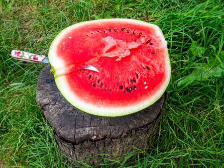 Red watermelon with seeds cut with a knife. Berry. Food photo. Place for your text. Harvest of watermelons. Background image. Poster. Advertising photo of a shop window. Summer season. Fruits.