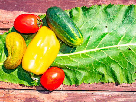 Vegetables for salad on a wooden background. Cucumbers and tomatoes. Bulgarian pepper. Vegetable salad. Food photo. Template for text. Free space for text. Shop window. Advertising photo. Poster.
