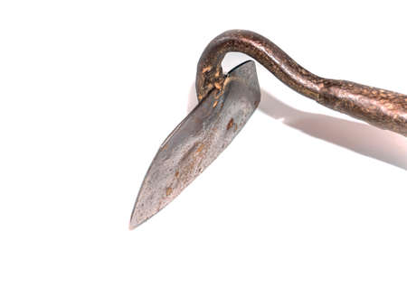 The hoe is a tool for weeding a vegetable garden.