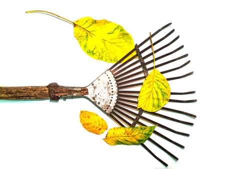 Iron fan for cleaning leaves hand tools. Stock fotó